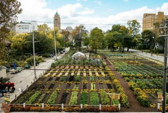 Source : The Michigan urban farming initiative